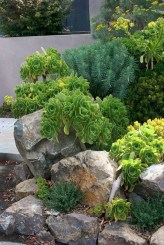 Inspiring Rock Garden Ideas To Make Your Landscaping More Awesome 16