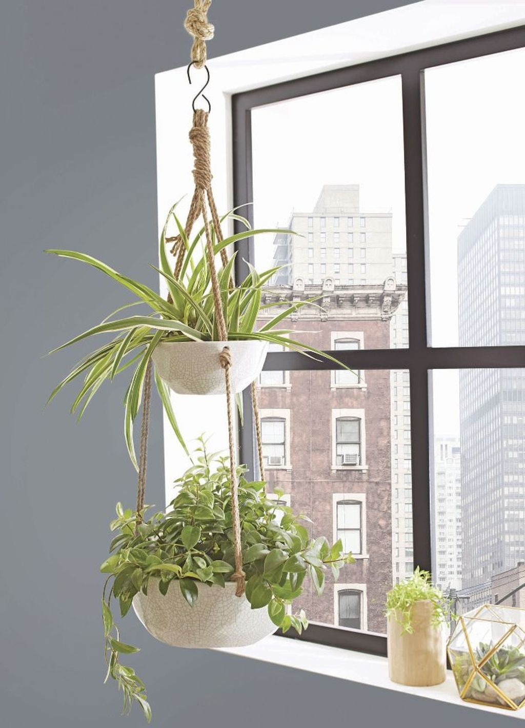 Favorite Home Patio Design Ideas With Best Hanging Plants 01
