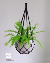 Favorite Home Patio Design Ideas With Best Hanging Plants 08