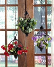 Favorite Home Patio Design Ideas With Best Hanging Plants 09