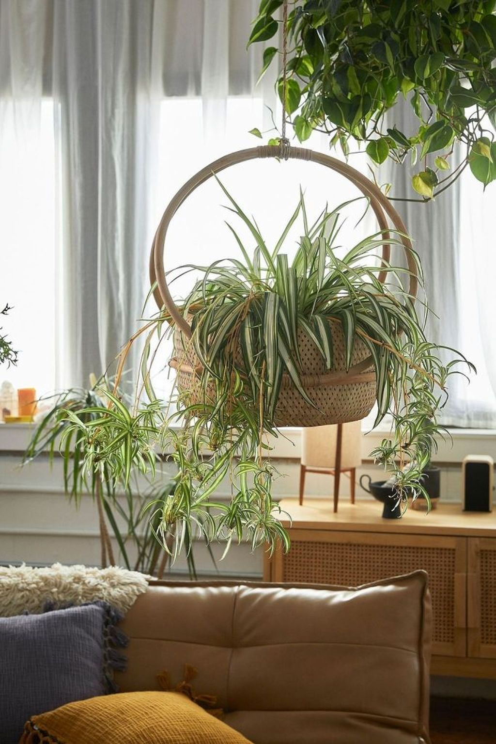 Favorite Home Patio Design Ideas With Best Hanging Plants 12