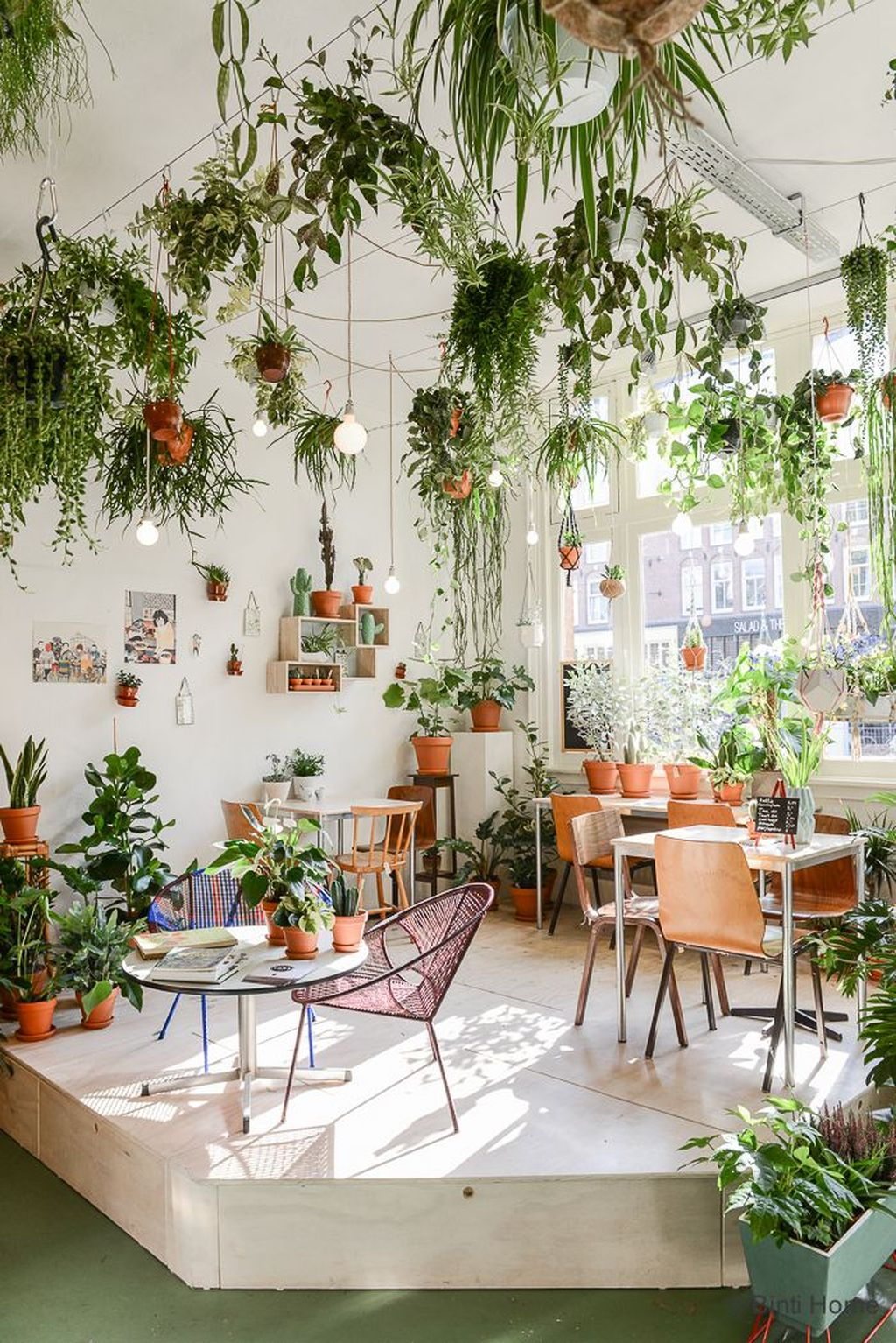 Favorite Home Patio Design Ideas With Best Hanging Plants 24