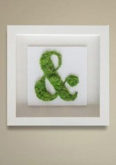 Delicate Natural Moss Wall Art Decorations Ideas To Try Right Now 24