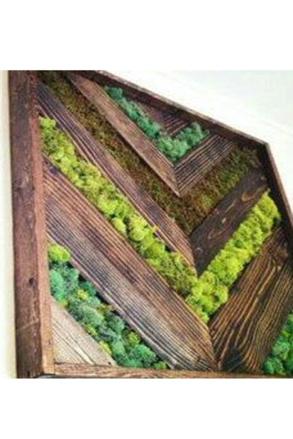 Delicate Natural Moss Wall Art Decorations Ideas To Try Right Now 25