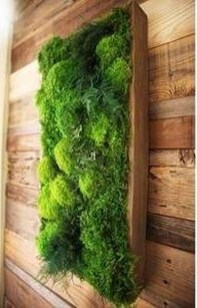 Delicate Natural Moss Wall Art Decorations Ideas To Try Right Now 30