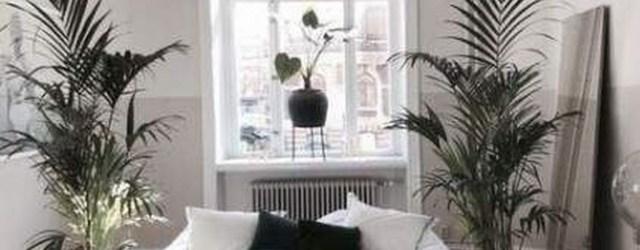 Brilliant Bedroom Design Ideas With Nature Theme 30