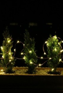 Delicate Tiny Winter Trees Design Ideas That You Should Try 02