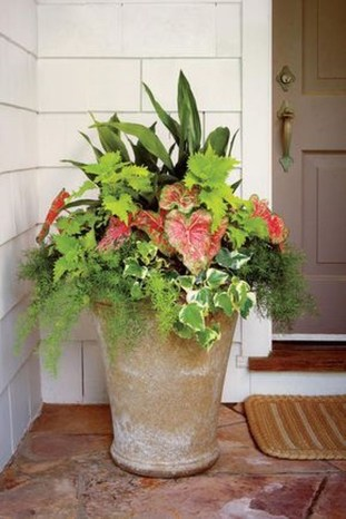 Luxury Container Garden Design Ideas For Your Landscaping Design 13