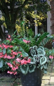 Luxury Container Garden Design Ideas For Your Landscaping Design 14