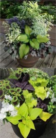 Luxury Container Garden Design Ideas For Your Landscaping Design 15