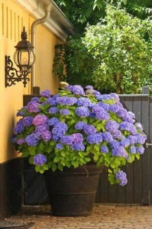Luxury Container Garden Design Ideas For Your Landscaping Design 20