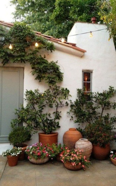 Luxury Container Garden Design Ideas For Your Landscaping Design 26