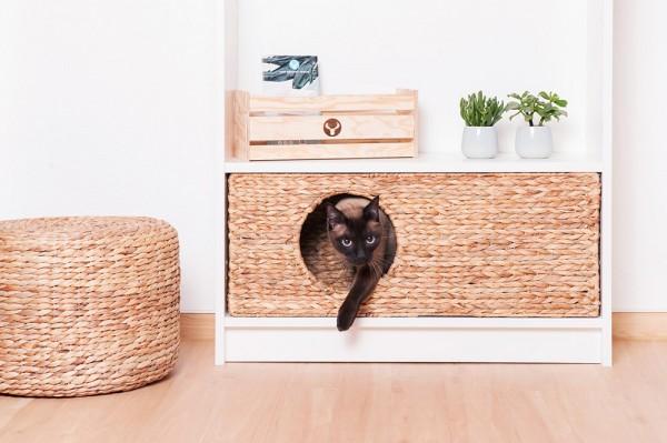 Ikea S Your Pets Will Love, Cat Litter Box Furniture Ikea