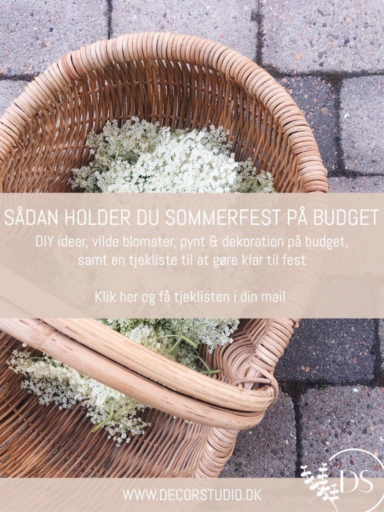 Sådan holder du sommerfest på budget