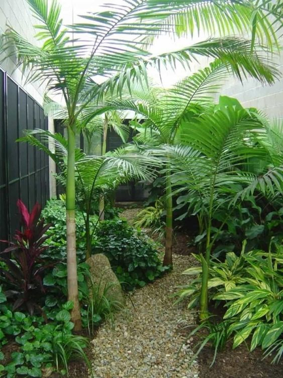 Mesmerizing Tropical Backyard Ideas to Freshen Your ... on Tropical Small Backyard Ideas id=56136