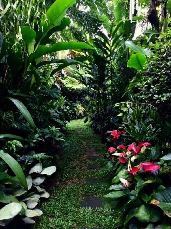 Mesmerizing Tropical Backyard Ideas to Freshen Your ... on Tropical Backyards  id=71093