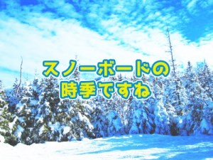 snow-trees-winter-forest