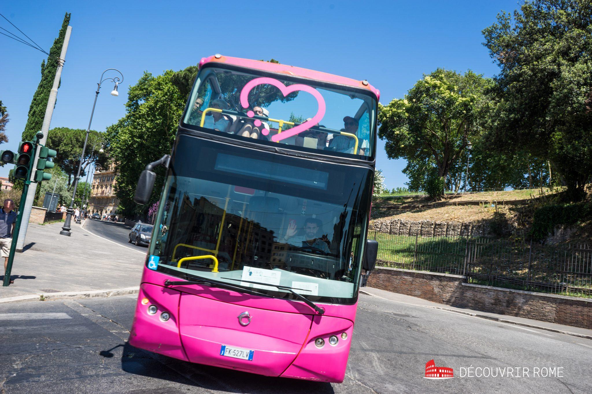 Bus Hop On Hop Off rose