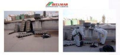web 1 300x137 - Servicio Andaluz de Salud