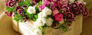 Cursos de arreglos florales naturales gratis