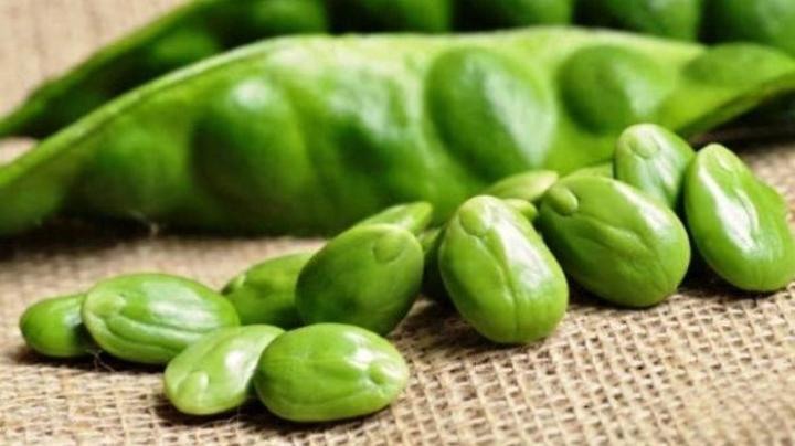 sayuran petai