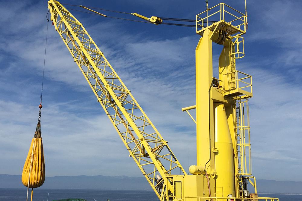 Image result for crane inspection services
