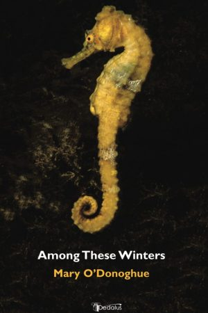 Among These Winters. Mary O'Donoghue