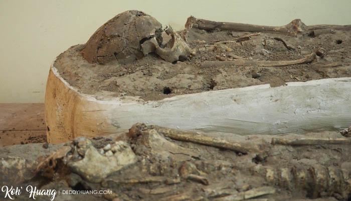 fosil-manusia-purba-gua-harimau