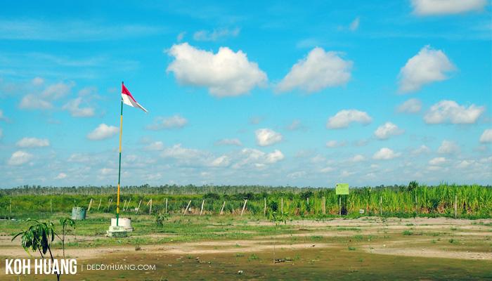 lapangan gersang padang sugihan - Suaka Margasatwa Padang Sugihan, Potret Eksistensi Gajah Sumatera