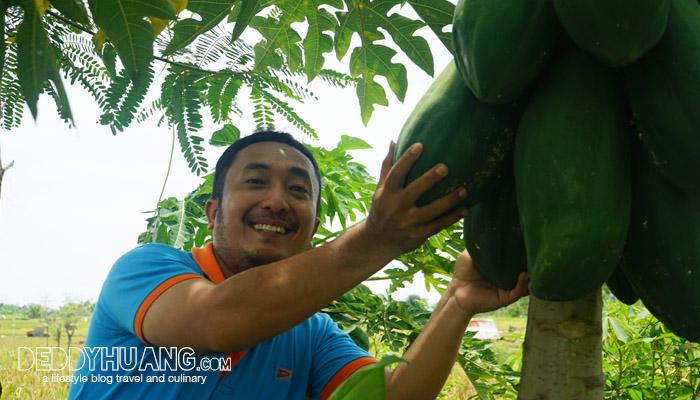 ekowisata subak sembung 11 - Menabur Harapan di Banjar Berseri Peguyangan