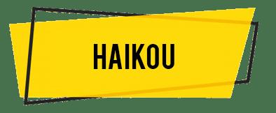 haikou 1 - Berani Berlibur ke Hainan, Ini Rekomendasi Tempat Wisata Untuk Liburanmu Selanjutnya