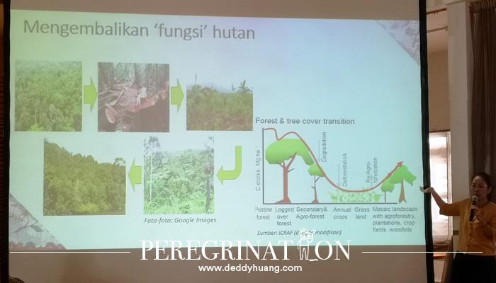 mitigasi fungsi hutan