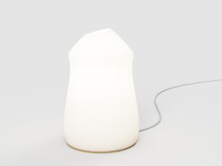 Algorithmic lamp 14