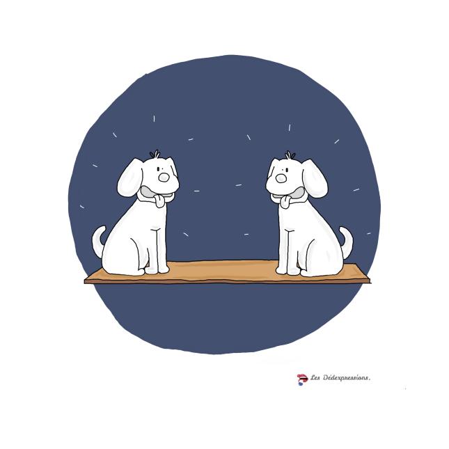 expression se regarder en chiens de faience les dedexpressions