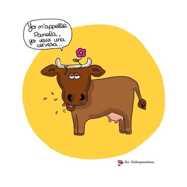 parler francais comme une vache espagnole les dedexpressions