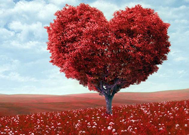 dedicatorias de amor cortas
