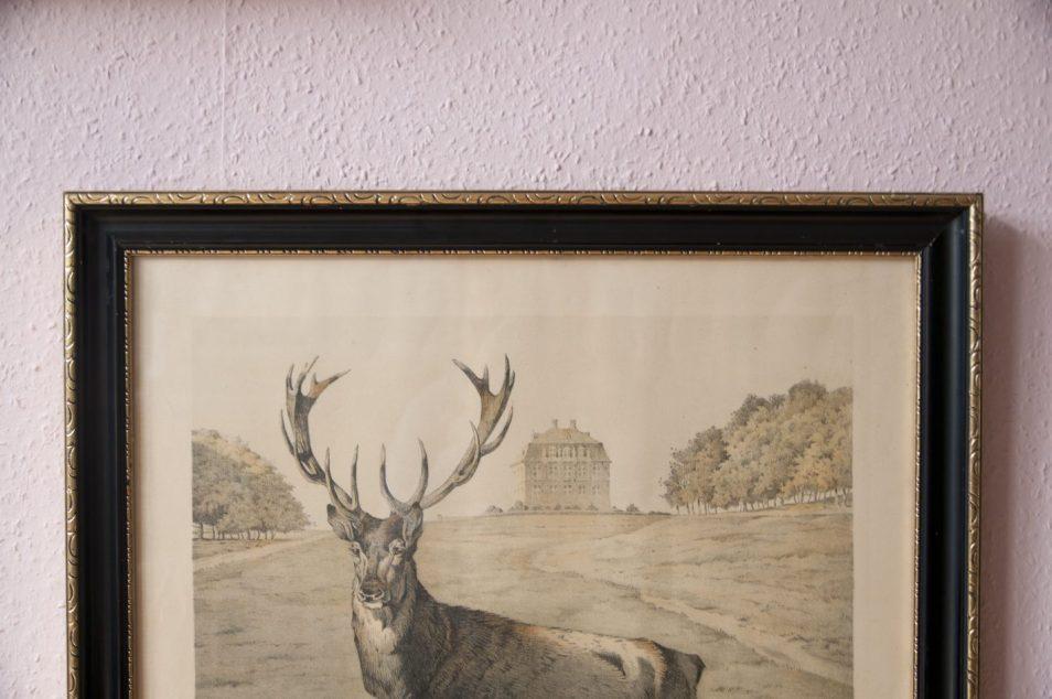 vintage lijst eland