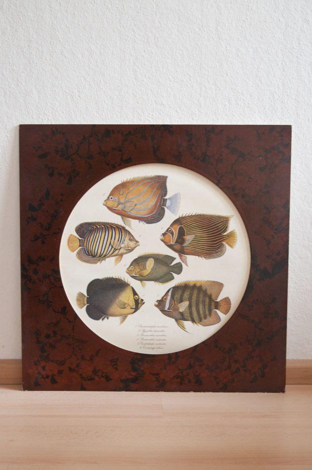 vintage lijst vissen