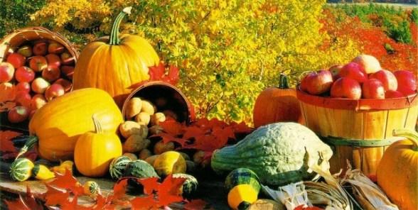 autumn molney scho