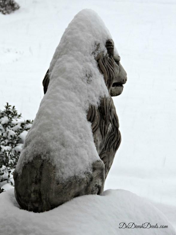 Snowy Days 005