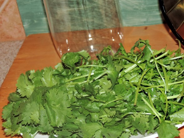 colon cleanse with cilantro