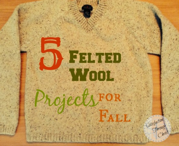 5-Felted-Wool-Projects-For-Fall