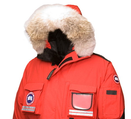 Canad Goose Parka
