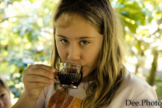 Plantacja kawy (34)