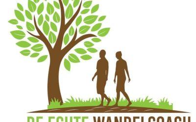 Het ontwerp van het logo.