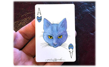 ACE OF CATS ICON WEBSITE