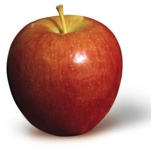 Apple 'Braeburn'  (Bareroot)