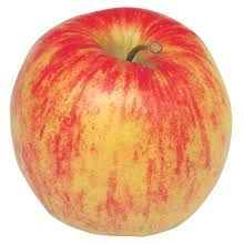 Apple 'Jonagold'  (Bareroot)