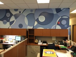 Mount Airy Middle, Interactive Mural. Raised panels are magnetic and can hold student artwork.
