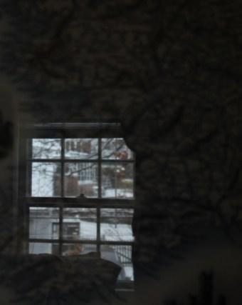 window-reflected